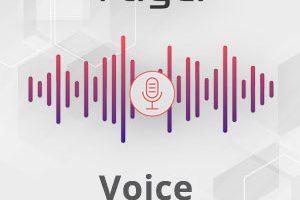 Vtiger Voice Assistant