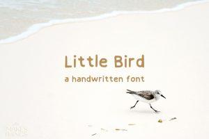 Little bird Script font