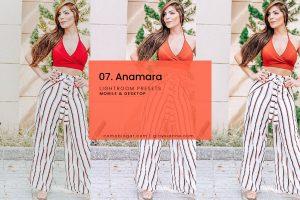 Anamara Blogger Presets