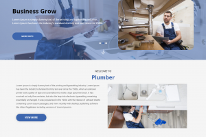 Plumber Wordpress theme